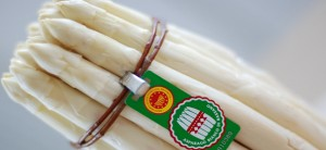 asparago-bianco-bassano-dop-large