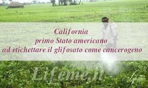 GLIFOSATO BANDITO IN CALIFORNIApg