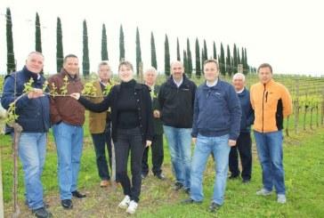 Bardolino e Custoza hanno 3500 ettari di  vigneto gestiti della difesa integrata in agricoltura