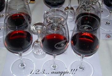 Alla cieca il Bursòn si conferma un grande vino