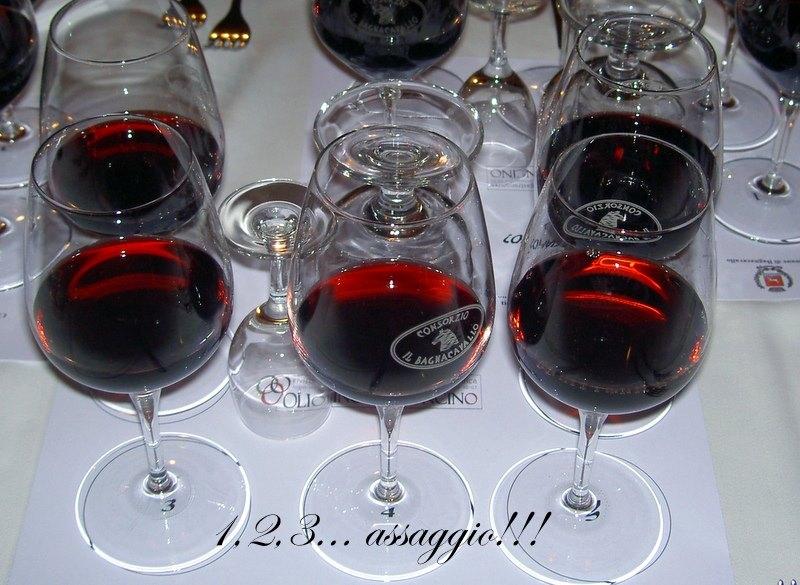 Photo of Alla cieca il Bursòn si conferma un grande vino