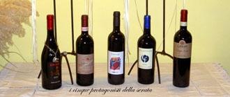 Photo of Bursòn: un vino, una storia