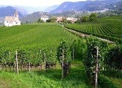 Giornate Altoatesine del Pinot Nero