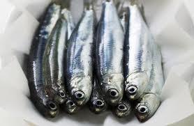 Chi mangia pesce vive più a lungo