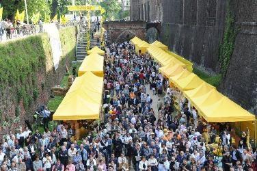 Photo of Il Tutor della spesa