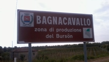 Photo of Convegno sul vino Bursôn