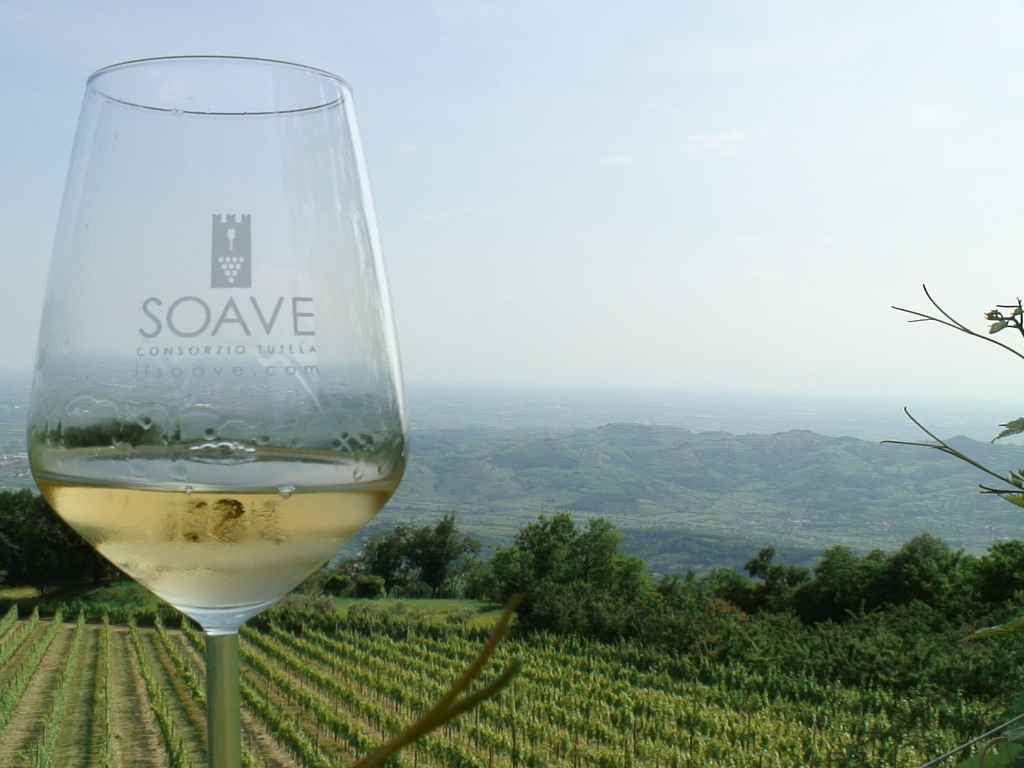 Photo of Equiwine, il Soave a cavallo