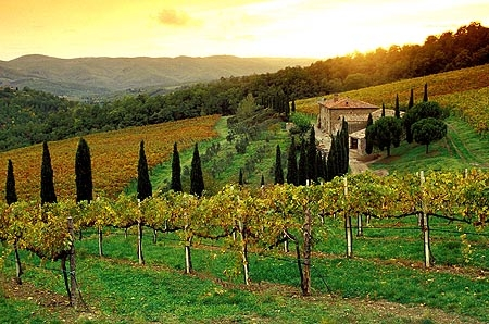 Photo of Marchio Toscana