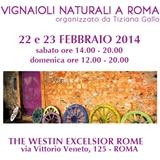 Photo of VI edizione dei Vignaioli Naturali