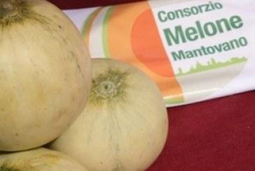 Melone Mantovano IGP