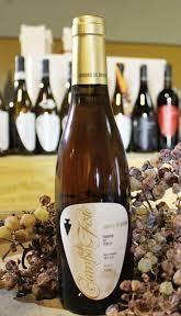 Photo of Vini di Montagna: premio d'eccellenza al Passito Veneto