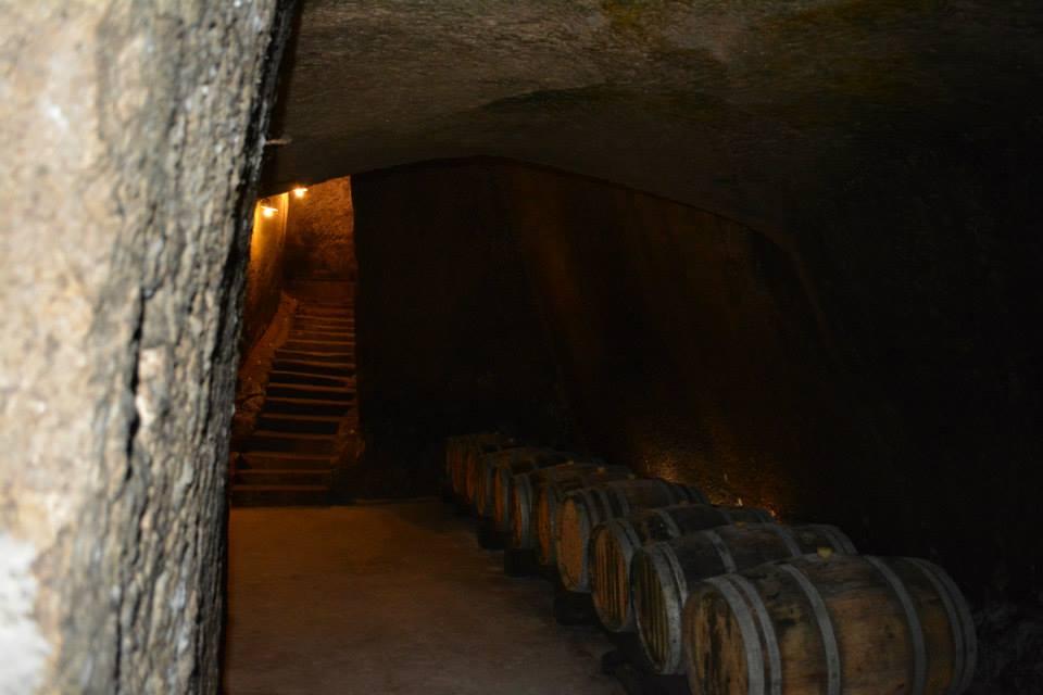 Un castello per il vino