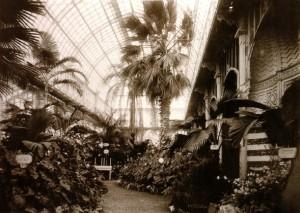 Giardino_dellOrticultura_interno_foto_d_epoca