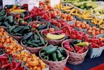 Agroalimentare italiano in un click