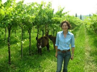 I Vignaioli Indipendenti sul Testo Unico Vino
