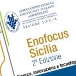 2° edizione dell'Enofocus