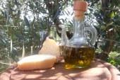 Enolia: la Versilia, il suo olio e non solo