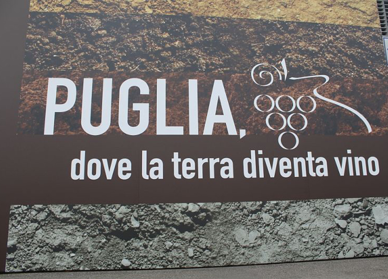 Photo of Taste Press & Blog: le nostre degustazioni – Prima parte
