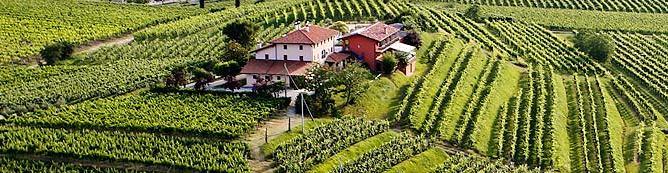 Photo of Inizia con le erbe il Convivio da Zorzettig