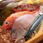 Aspettando Slow Fish 2015