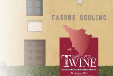 T-WINE, l'esclusivo tasting targato AIS Toscana