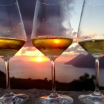 Volcanic Wines: vini vulcanici a confronto
