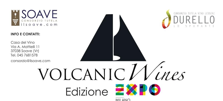 Photo of Volcanic Wines raccontano i sei mesi di Expo