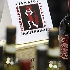 Photo of A Piacenza al mercato dei vini