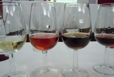 Dedicato a chi ama il vino e vuole saperne di più