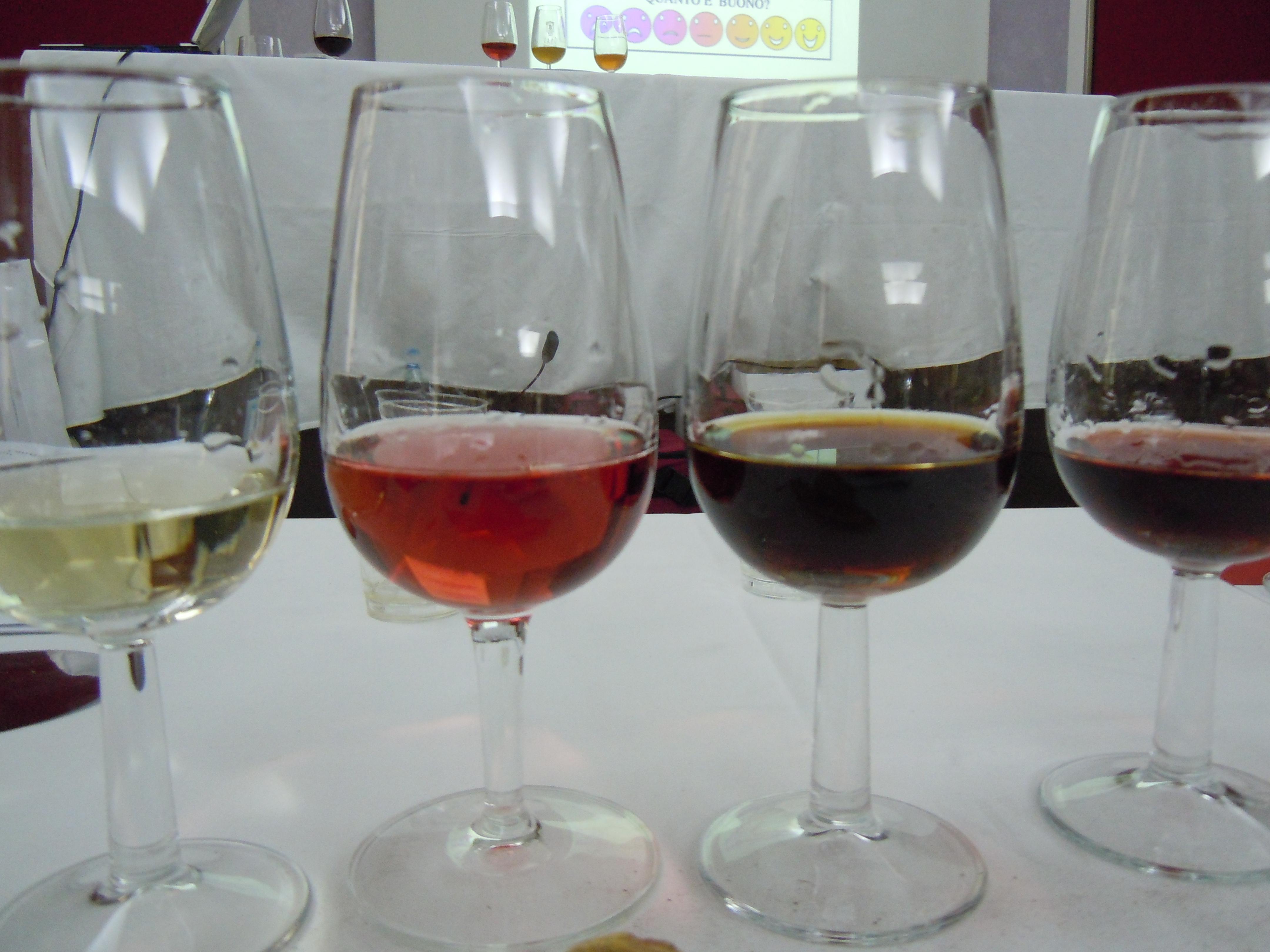 Photo of Dedicato a chi ama il vino e vuole saperne di più