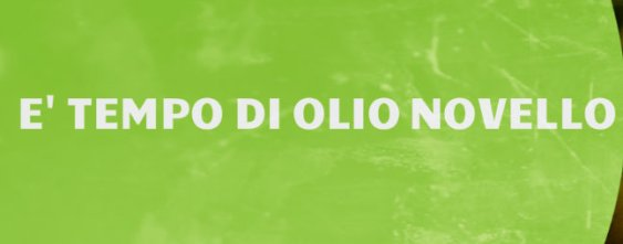 Photo of Olio Novello o Olio Nuovo?