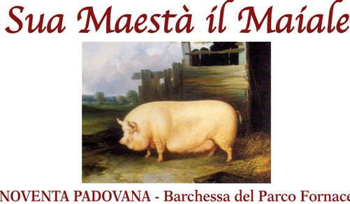 Sua Maestà il Maiale a Noventa Padovana