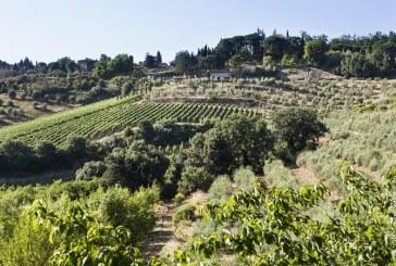 Donne del vino, liriche e cultura del vino.