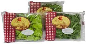 verdure orti di venezia