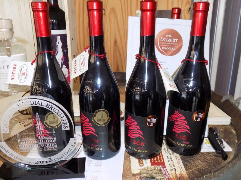 Photo of Bursòn Tenuta Uccellina: Decanter World Wine Awards