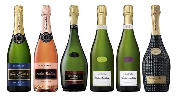 Photo of Dodici champagne a Bologna