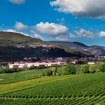Valpantena, una valle, una cantina e tante medaglie