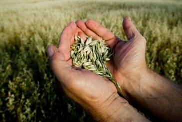 Agricoltura bio: scelta individuale o politica?