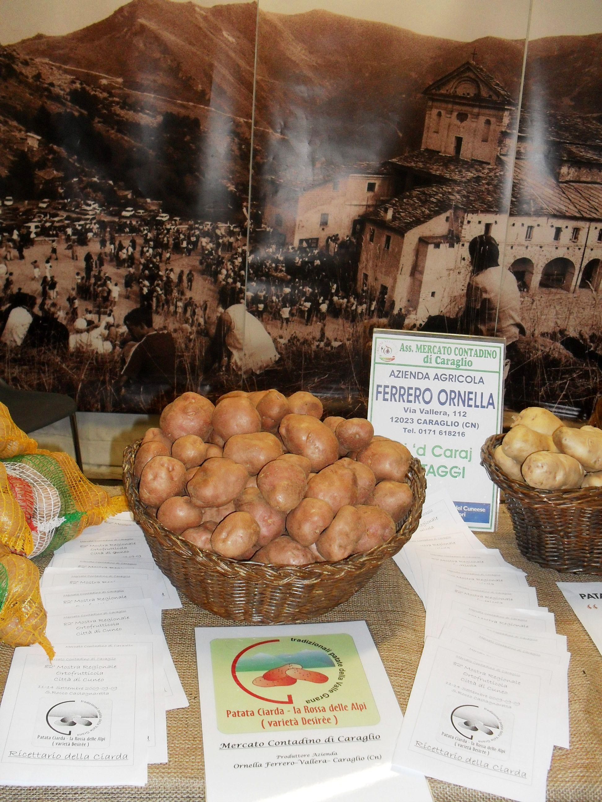 Photo of Bodi Fest dove bodi vuol dire patata