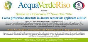 acquaverderiso_corso-professionalizzante