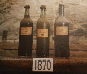 fattoria-dei-barbi-fotto-prime-bottiglie