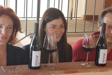 Mille968 un vino per l'anno della DOC