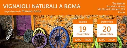 Photo of Vini Naturali nona edizione a Roma