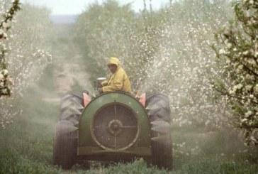 Allarme Onu pesticidi