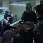 """L'Azienda Agricola Sodano a """"Tutta n'ata storia"""""""