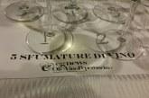 Serata di gala per 5 sfumature di vinio