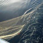 DM pesca artigianale crea disparità tra mestieri