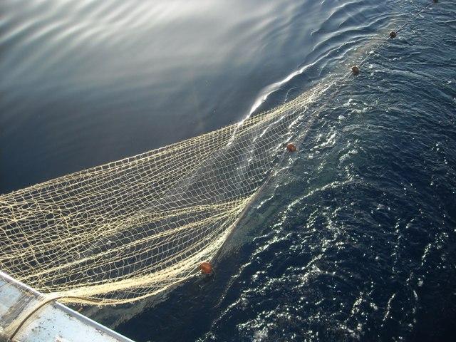Photo of DM pesca artigianale crea disparità tra mestieri