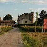 Una festa per l'antico pomodoro riccio di Parma