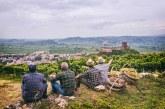 Territorio vitato colline di Soave protetto dalla FAO